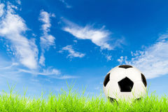 Soccer ball on green grass with blue sky Royalty Free Stock Photo
