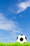 Soccer ball on green grass with blue sky Royalty Free Stock Images