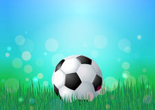 Soccer ball on green grass. Blue sky and green grass nature backdrop. Bokeh vector background Stock Photography