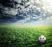 Soccer ball in green grass Stock Image