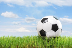 Soccer ball in a green grass field Royalty Free Stock Image