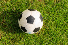 Soccer ball on green grass. With its shadow Royalty Free Stock Photography