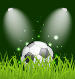 Soccer ball on green grass with light Royalty Free Stock Image
