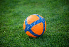 Soccer ball on green grass. In park royalty free stock photos