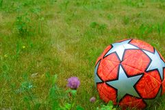 Soccer ball on green grass. Red soccerball close up on a green grass in the summer royalty free stock photo