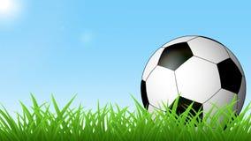 Soccer ball on green grass stock illustration