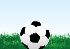 Soccer ball and green grass. stock illustration