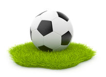 Soccer ball  on green grass. Sport concept Stock Photos