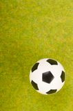Soccer ball on the green grass. Stock Photos