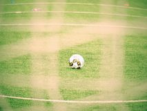 The soccer ball on green grass viewed through a green square gate net. Royalty Free Stock Photos