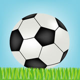 Soccer ball on green herb Stock Image