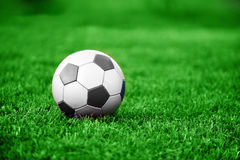 Soccer ball. On green lawn. summer's day stock photography