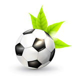 Soccer ball and green leaves Royalty Free Stock Photo