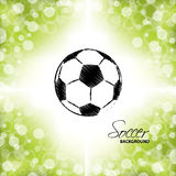 Soccer ball on green and white background Royalty Free Stock Image