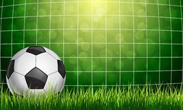 Soccer Ball in a Grid. On green background Royalty Free Stock Images