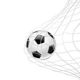 Soccer ball. In grid . Vector Royalty Free Stock Image