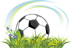 Soccer Ball In The Grass With Flowers Stock Images