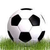 Soccer ball laying in the grass Royalty Free Stock Images