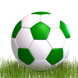 Soccer ball laying in the grass Royalty Free Stock Photo