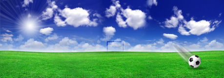 Soccer ball on meadow Royalty Free Stock Photos