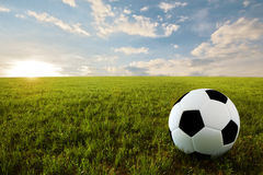 Soccer ball in meadow Royalty Free Stock Photo