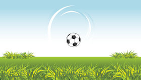 Soccer ball on the meadow Stock Photography