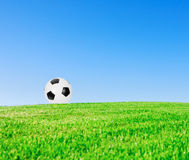 Soccer ball in meadow Royalty Free Stock Image