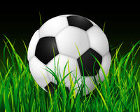 Soccer ball nite stadium. This is a soccer ball over grass field Royalty Free Stock Images