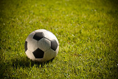 Free Soccer Ball On Grass Royalty Free Stock Photo - 20033695