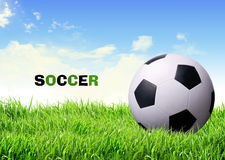 Free Soccer Ball On Grass Royalty Free Stock Image - 27026836