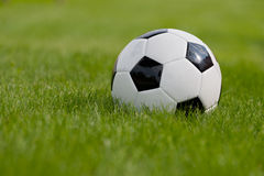 Free Soccer Ball On Green Field Royalty Free Stock Photos - 24884058