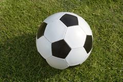 Soccer ball over the grass. Standard soccer ball over the grass royalty free stock photo