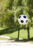 Soccer ball in the park. Trees out of focus Royalty Free Stock Image