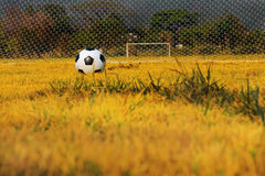 Soccer ball on playground field. Soccer ball on yellow golden field Royalty Free Stock Photo