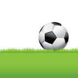 Soccer Ball Sitting in Grass Background Illustration Royalty Free Stock Photography