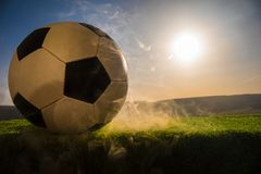 Soccer ball on soccer field. Football on green grass. Sunny background. Selective focus royalty free stock photos