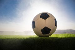 Soccer ball on soccer field. Football on green grass. Sunny background. Selective focus stock images