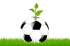 Soccer Ball With Sprout. Vector. Soccer Ball With Sprout On Green Grass Stock Photography