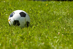 Soccer ball on a sunny meadow. Lots of copyspace royalty free stock image