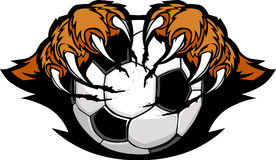 Soccer Ball With Tiger Claws  Image. Tiger Claws Holding a Soccer Ball Cartoon Royalty Free Stock Photo
