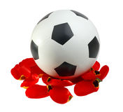 Soccer ball to the red petals Royalty Free Stock Photos