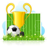 Soccer Ball with Trophy on Green Grass Royalty Free Stock Images
