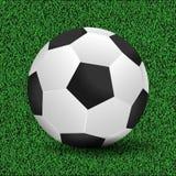 Soccer ball vector illustration. On grass royalty free illustration