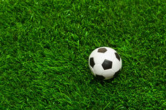 Soccer balls on the grass. Soccer ball on the football field, ball on grass Royalty Free Stock Image