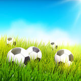 Soccer balls in the grass Royalty Free Stock Photos