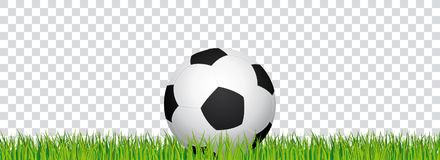 Soccer banner. Football stadium grass and transparent background. Header with soccer ball in the middle. Royalty Free Stock Photography
