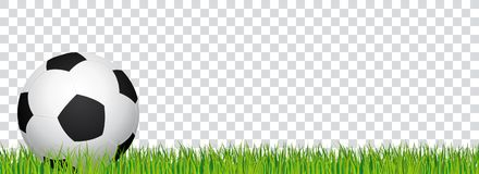 Soccer banner. Football stadium grass and transparent background. Header with soccer ball on the left side. Soccer banner. Football stadium grass and Stock Photography
