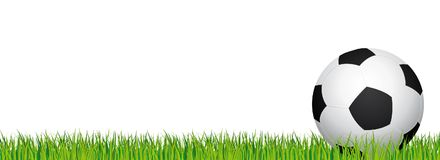 Soccer banner. Football stadium grass and white background. Header with soccer ball in the right side. Stock Images