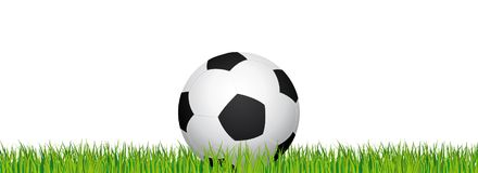 Soccer banner. Football stadium grass and white background. Header with soccer ball in the middle. Stock Photography