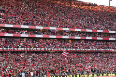 Benfica Stadium_Red Soccer Crowd_Football Champions Stock Images
